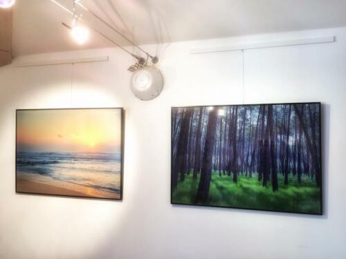 Galerie Reg Arts en Marensin 6